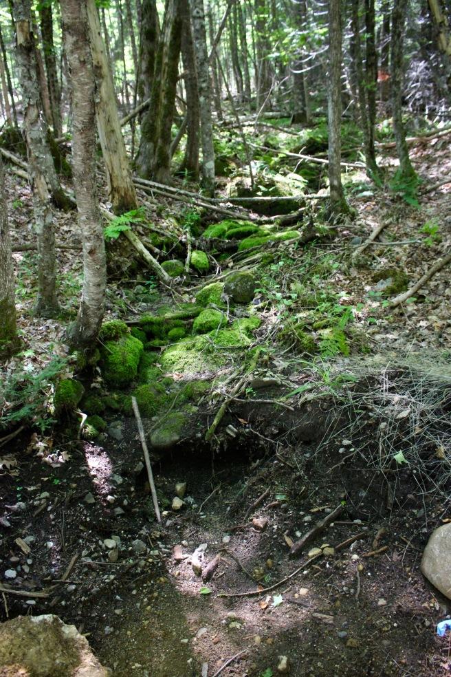 n-dry stream