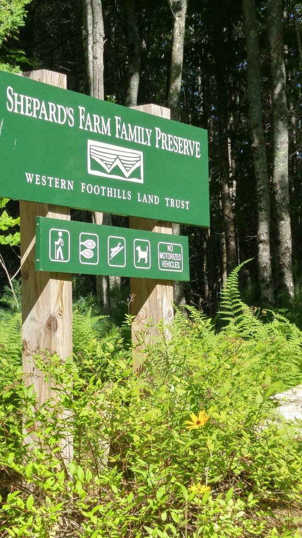 n Preserve sign