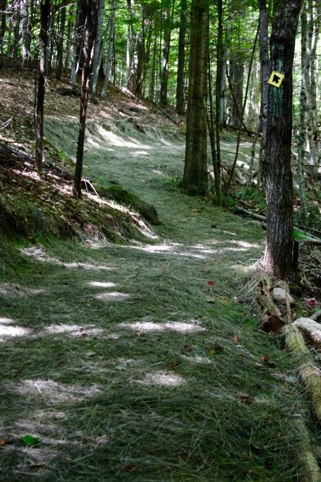 n-trail hay