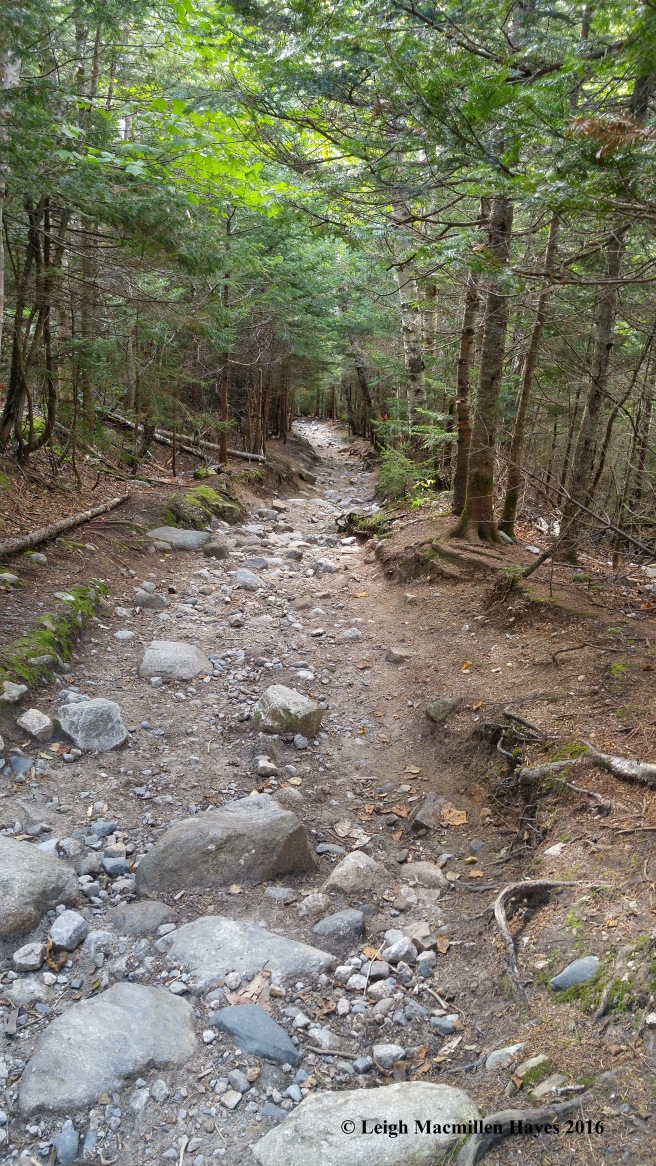 h-rocky trail (1)