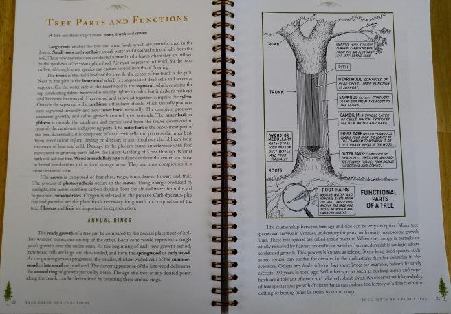 t-tree parts (1)