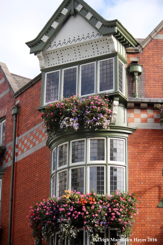 architecture-and-flowers-dublin