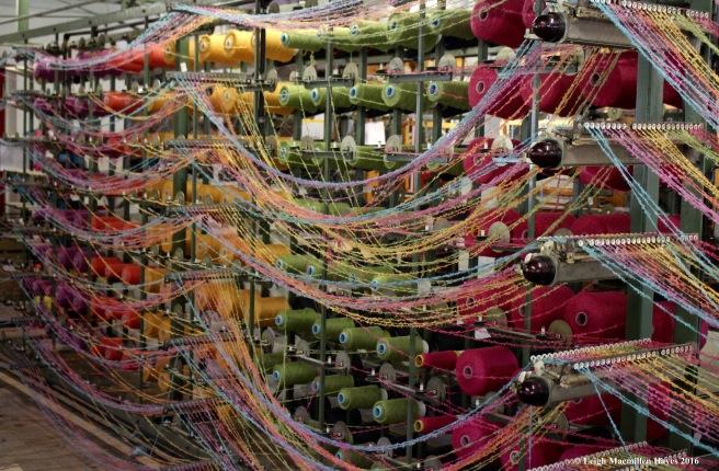 avoca-yarn-5