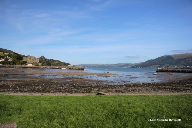 carlingford-lough1