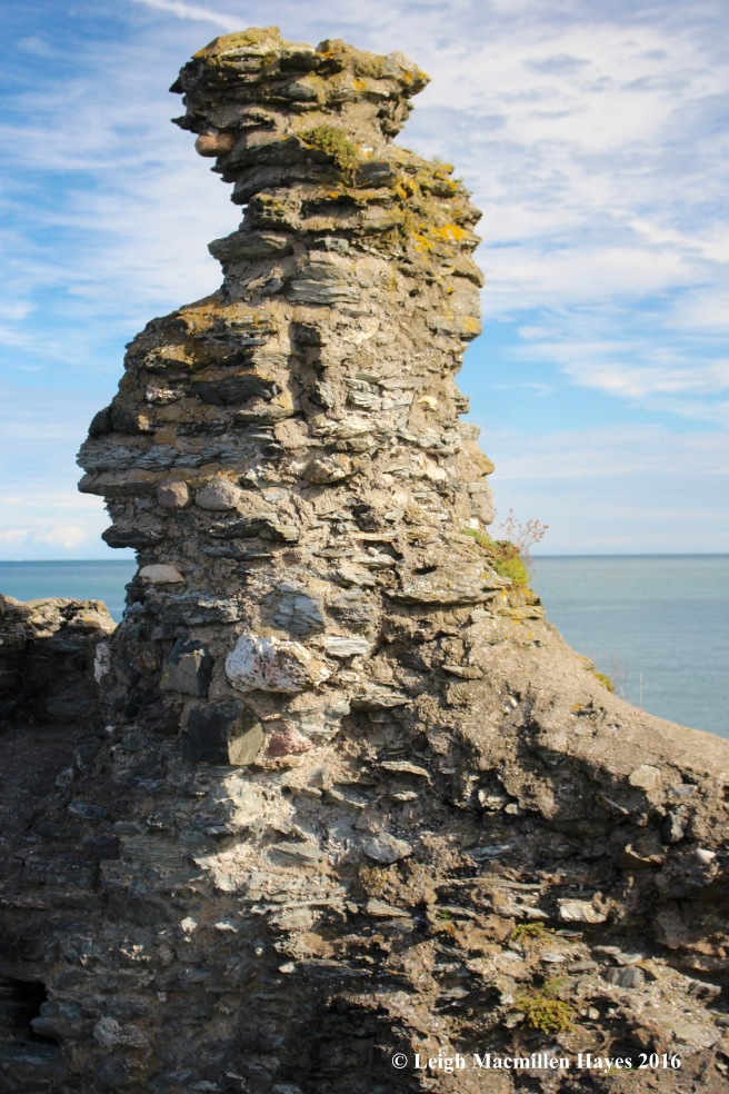 castle-wicklow-face-in-turret