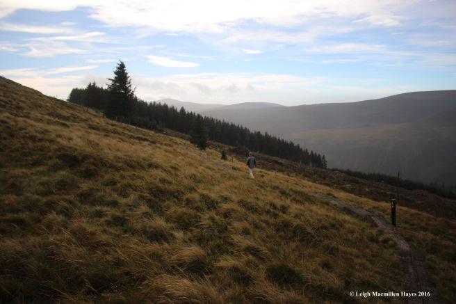 crossing-bog-wicklow-way-day-1