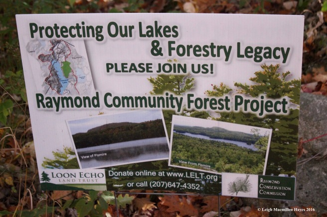 r-raymond-forest-sign