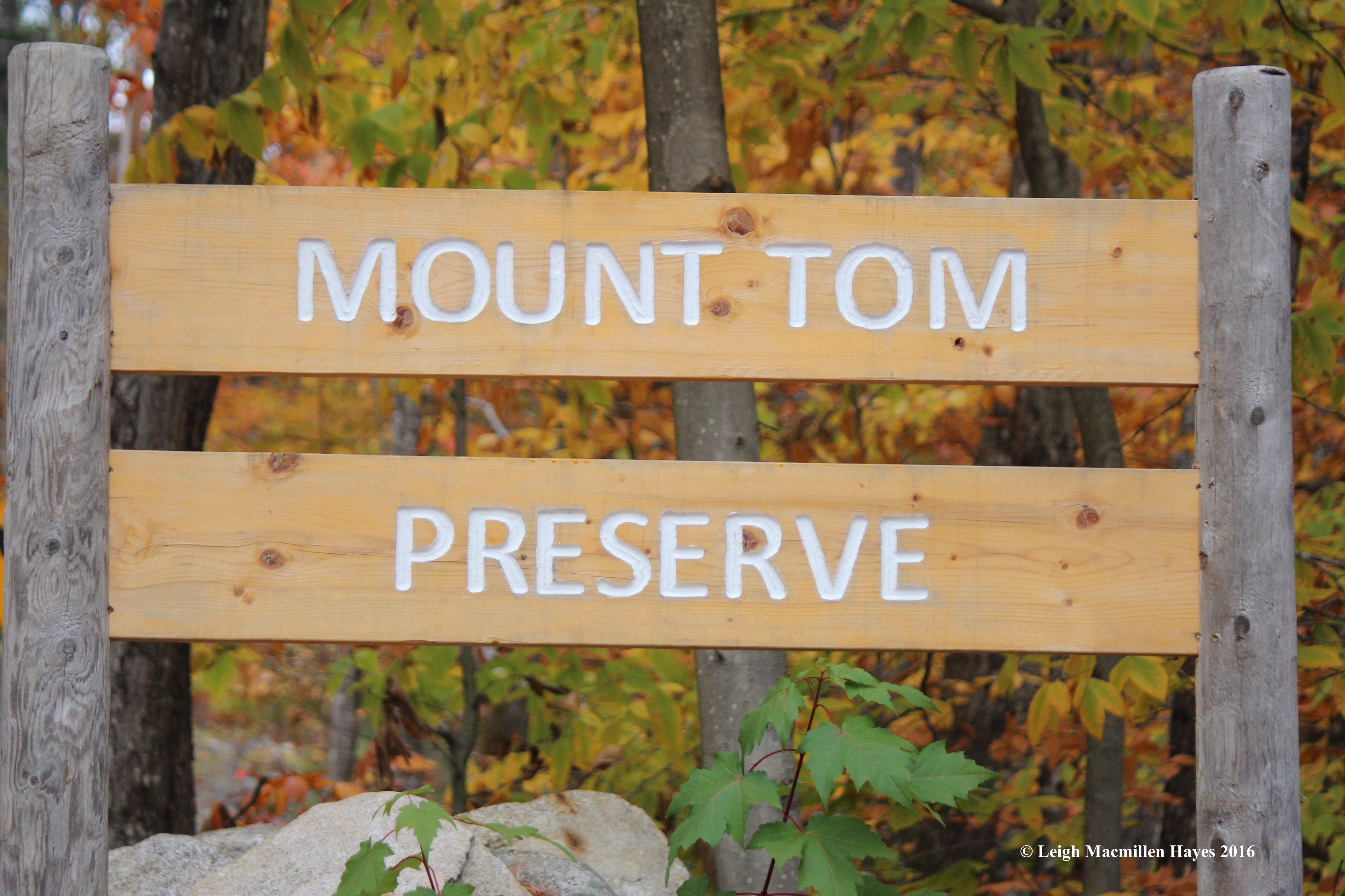 t-preserve-sign