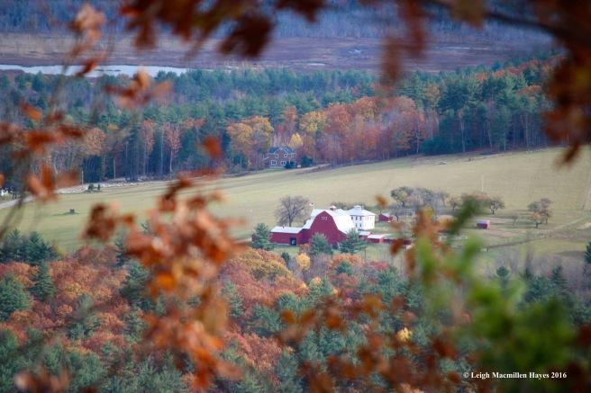t-richardson-farm
