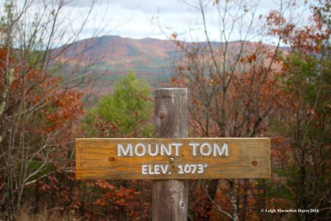 t-summit-sign