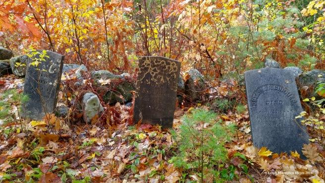 u-cemetery-curriers-1