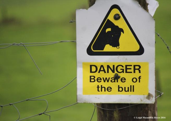 w-bull-sign