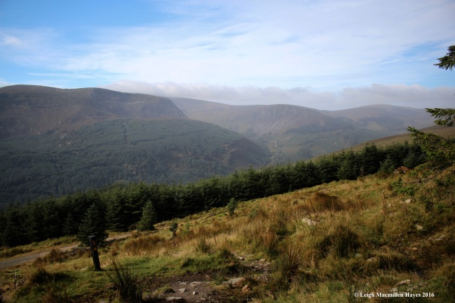 wicklow-day-3-1
