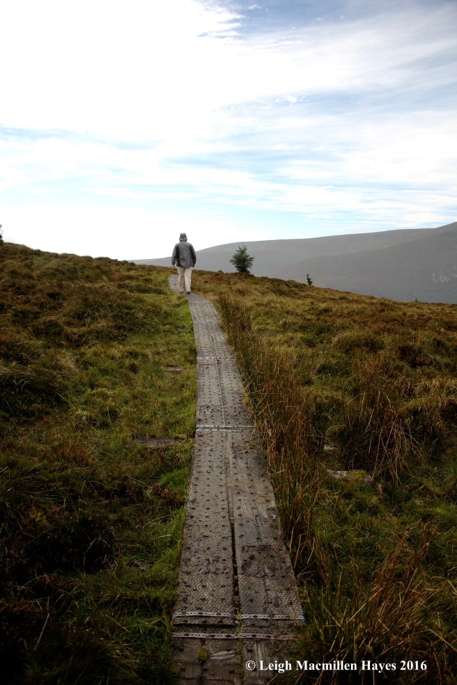 wicklow-way-bog-day-1