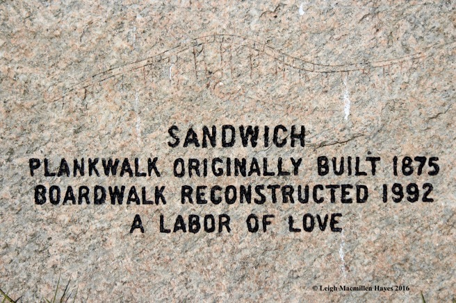 c-sandwich-plankwalk-sign
