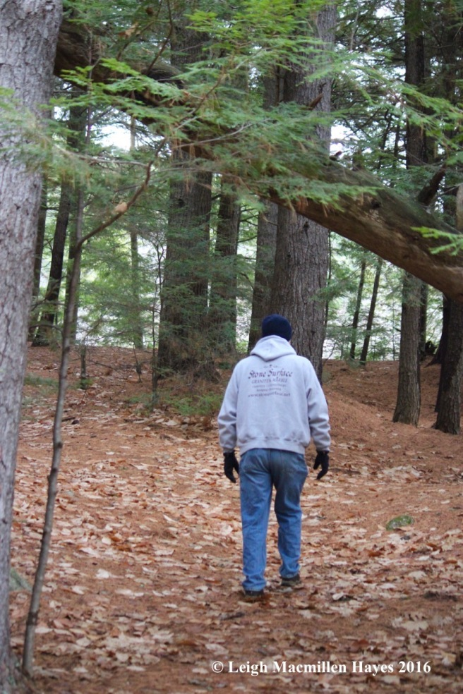 s1-hemlock-grove