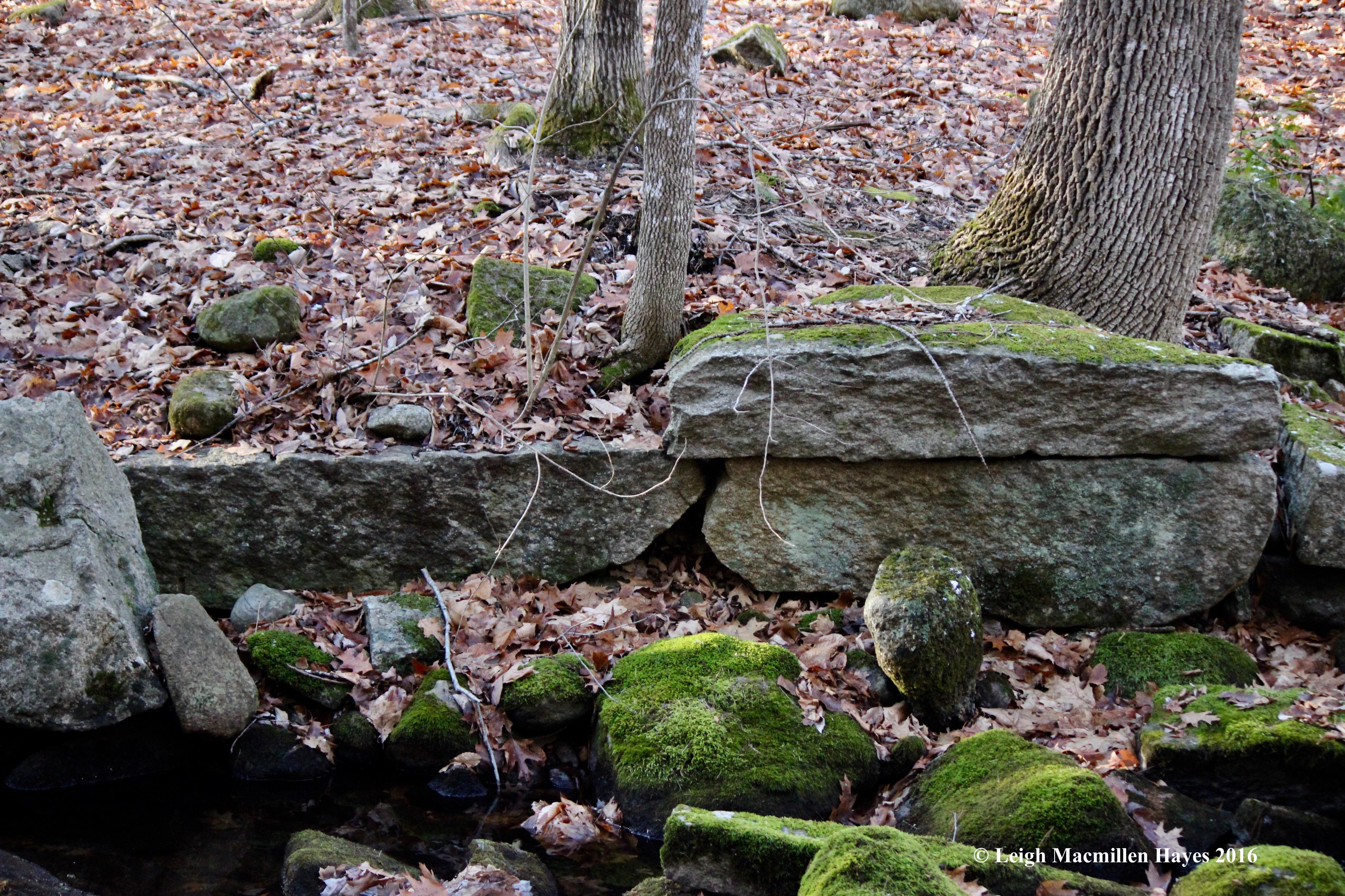 w-stones-line-brook