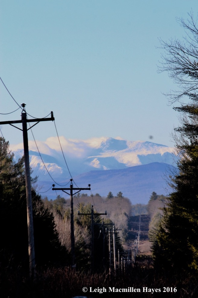 s-mt-washpowerline