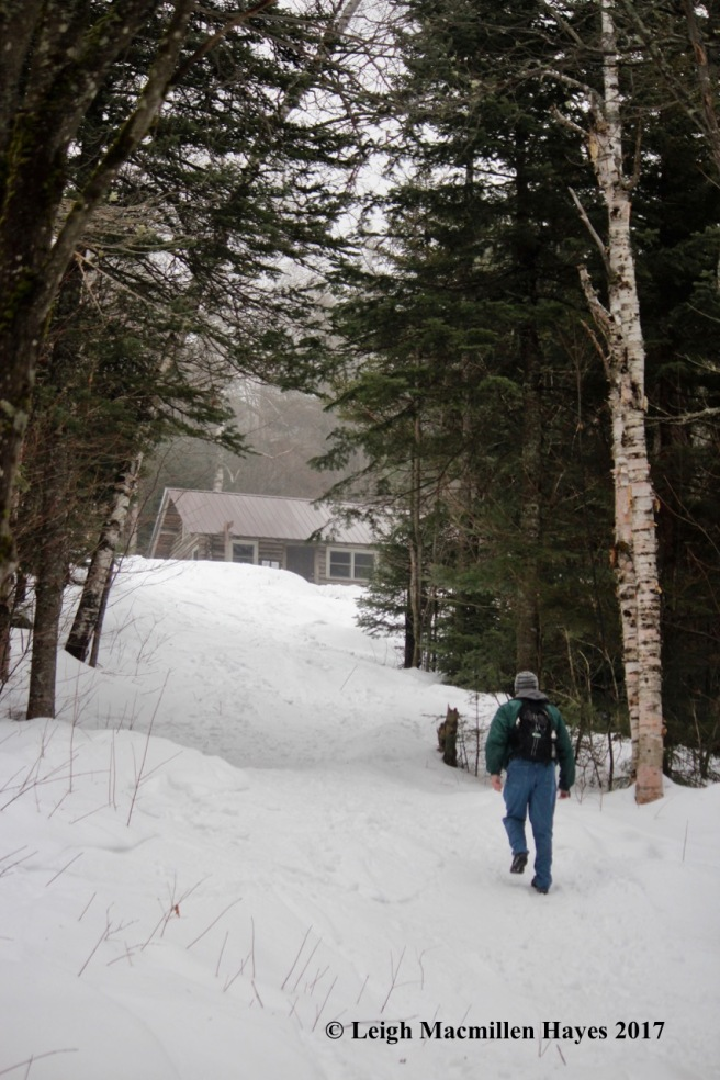 b-black-mtn-cabin