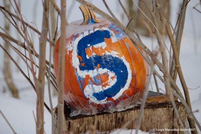 f-pumpkin