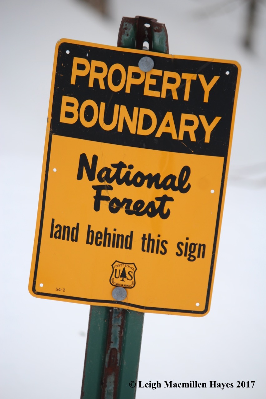 j-national-forest-sign