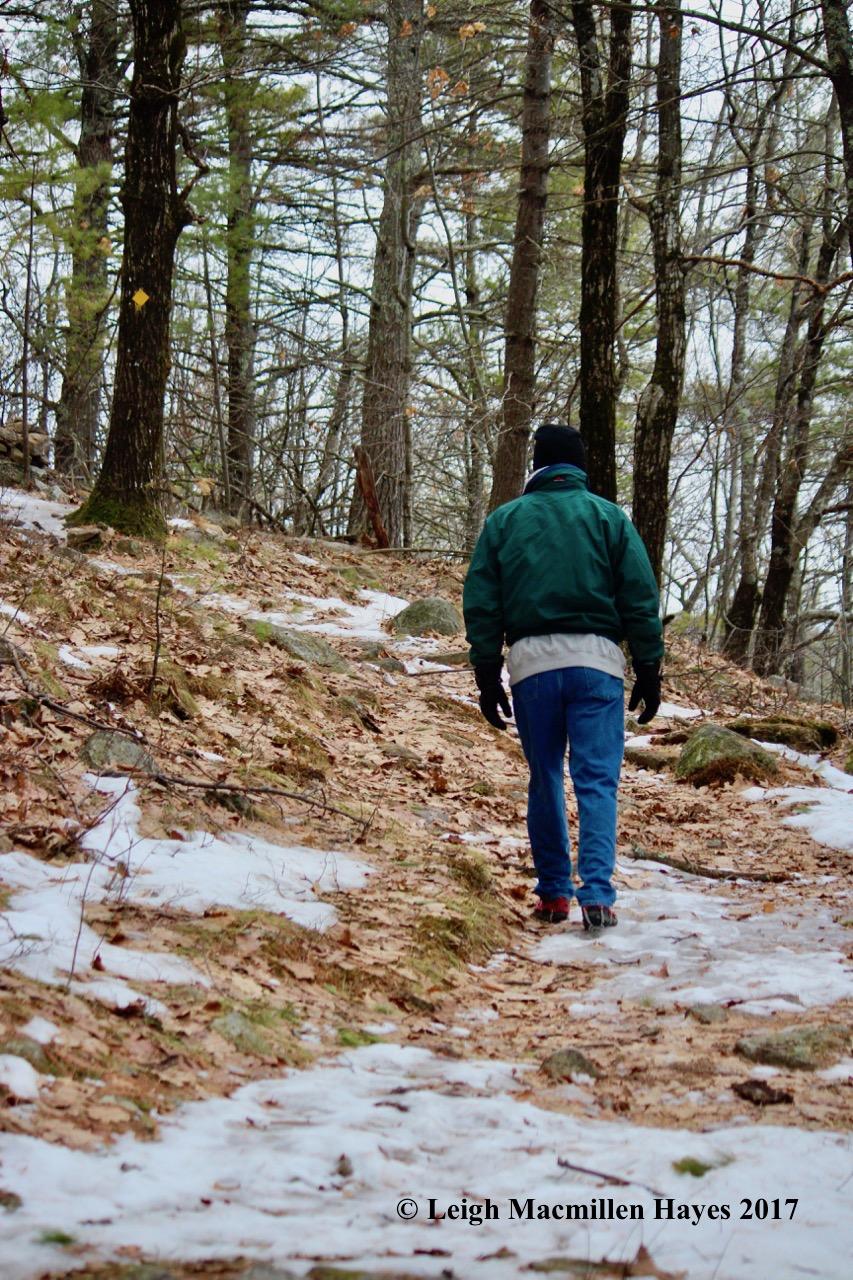 p-spring-trail-1