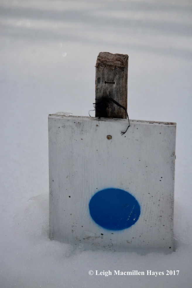 r-snow-level