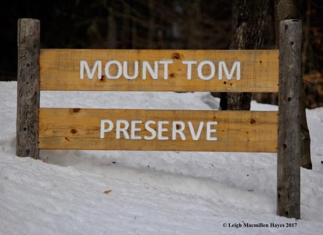 m2-preserve-sign