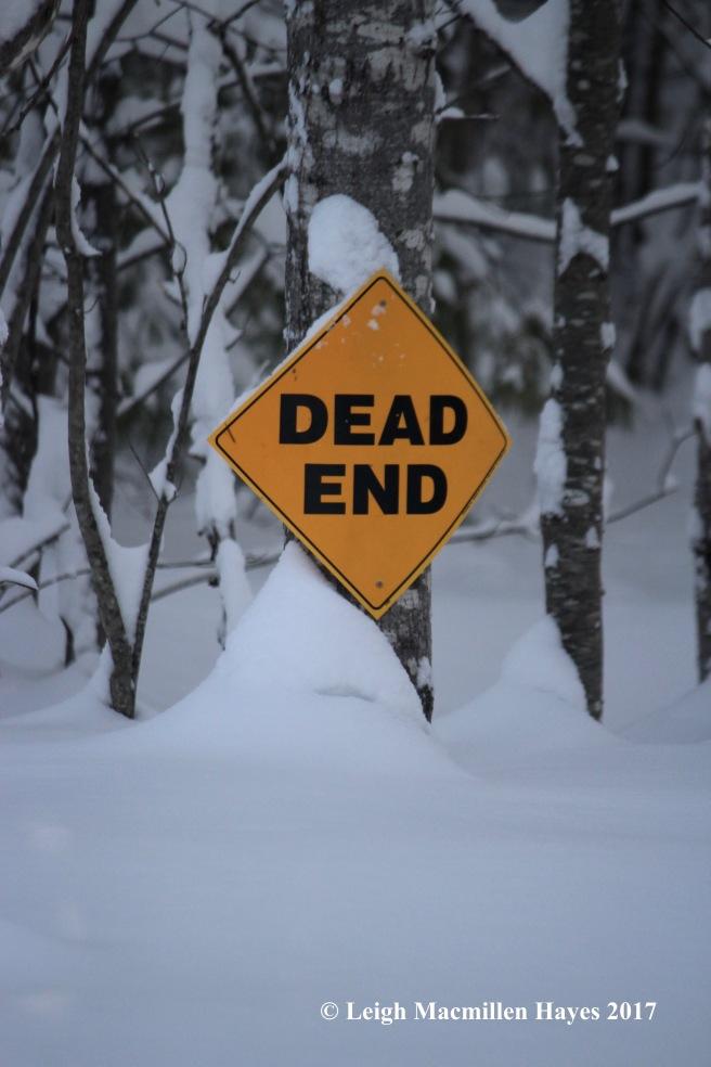s-dead-end