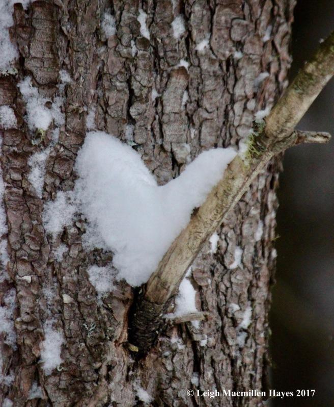 v15-snow-heart-3