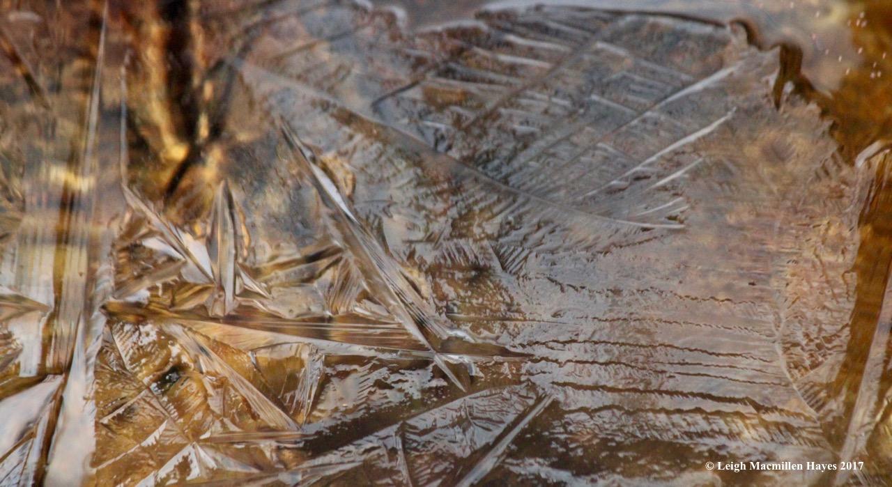 k-ice art