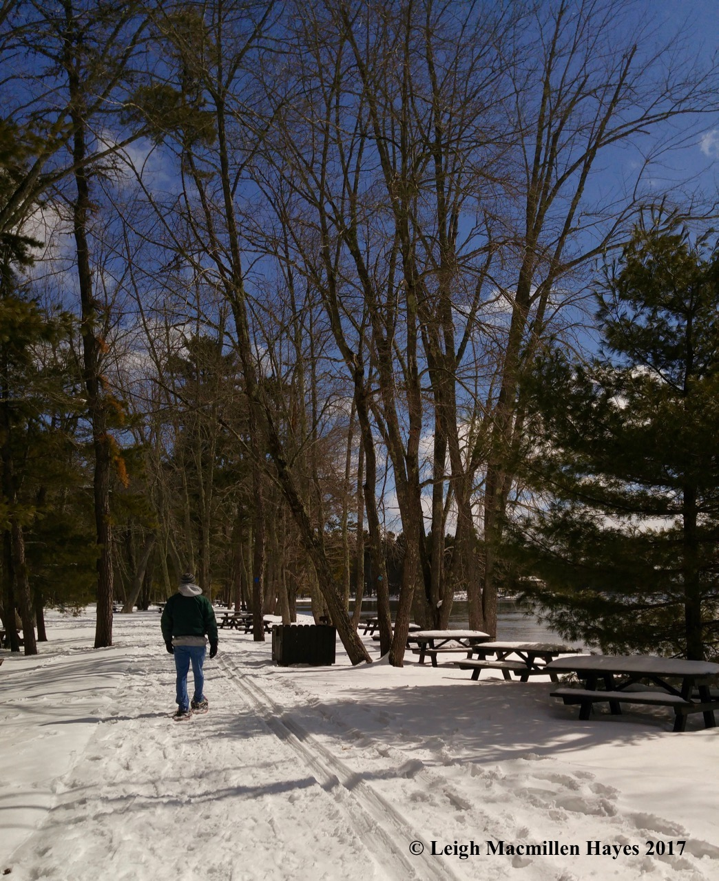 s-picnic tables (1)