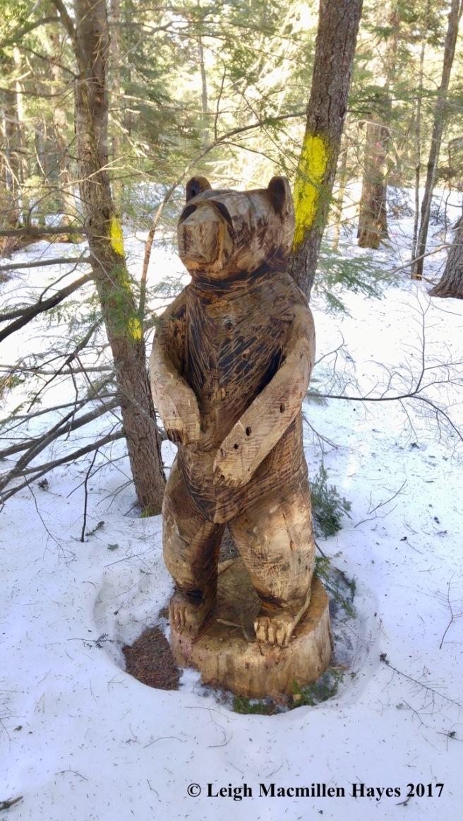 t-bear-1-1