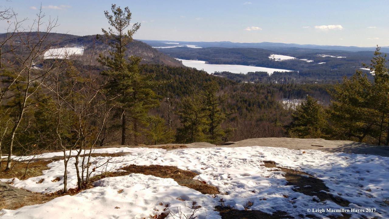 t-summit-view-2-1