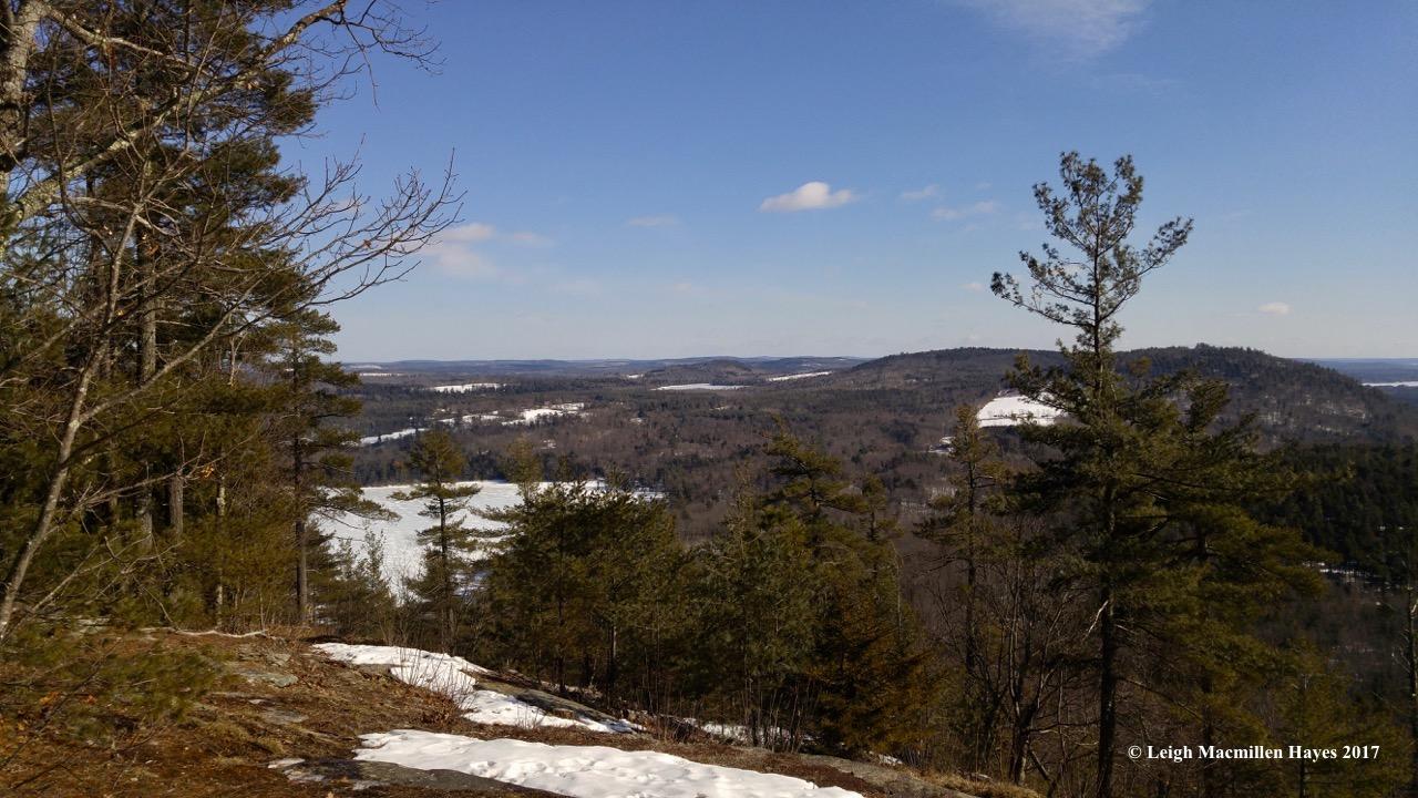 t-summit-view-4-1
