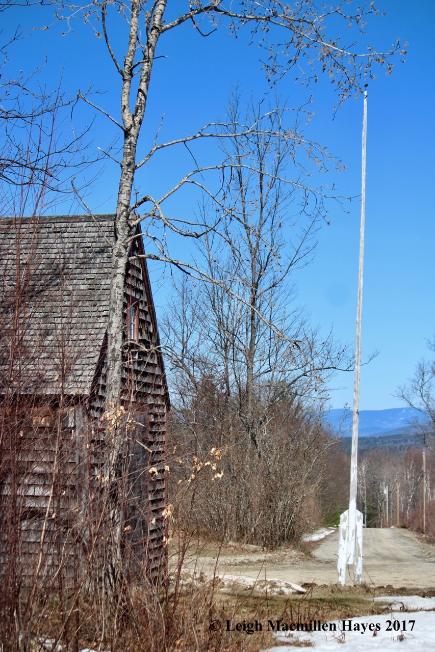 n-shop and flagpole