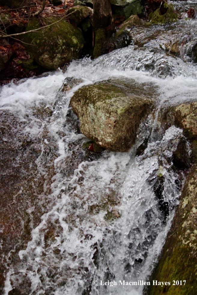 n-water art 2