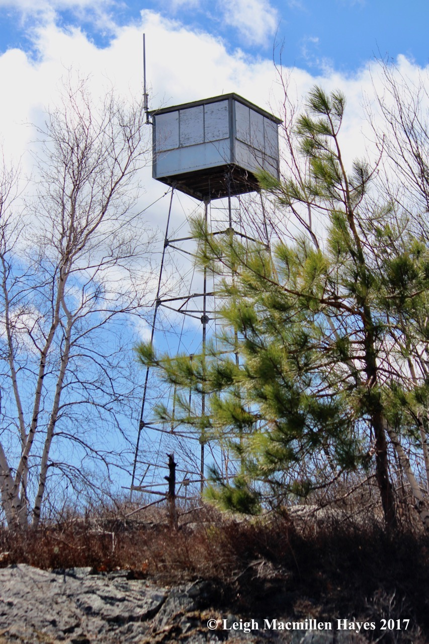 p-fire tower 1