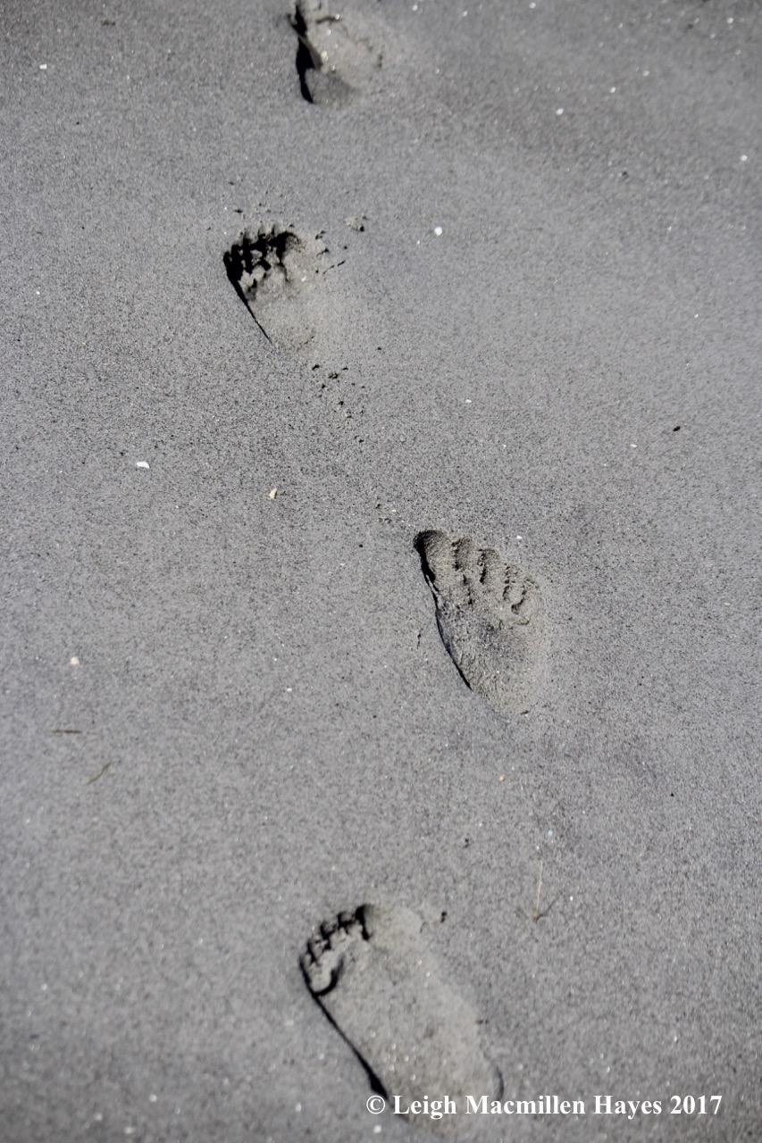 p-footsteps