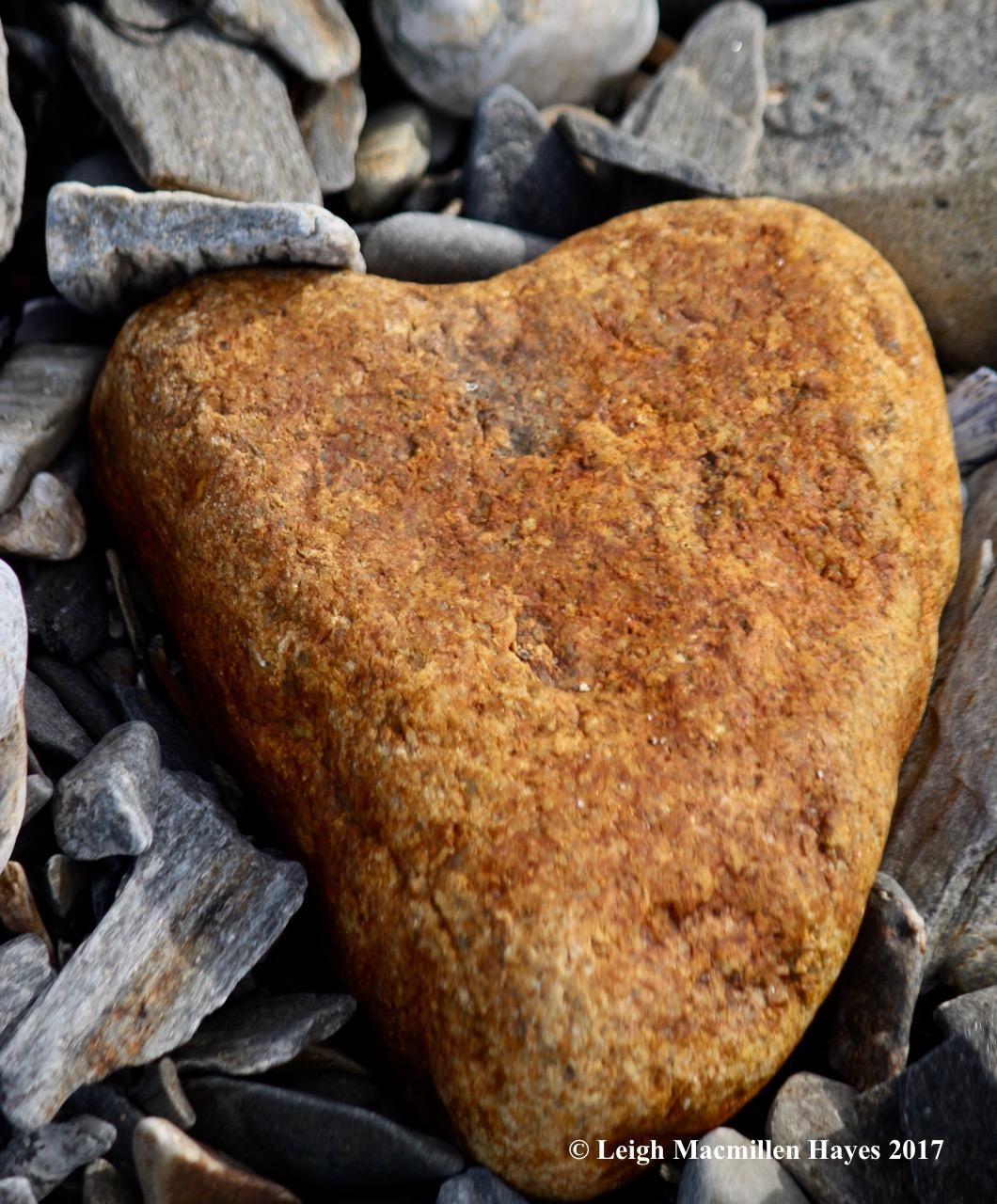p-heart 3