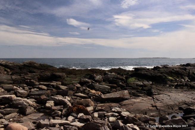 p-rocky coast 2