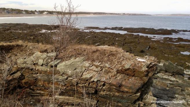 p-white rocks 2 (1)