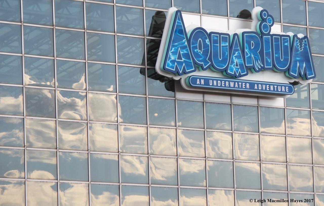 c-aquarium sign