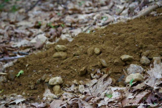 p-foxhole debris