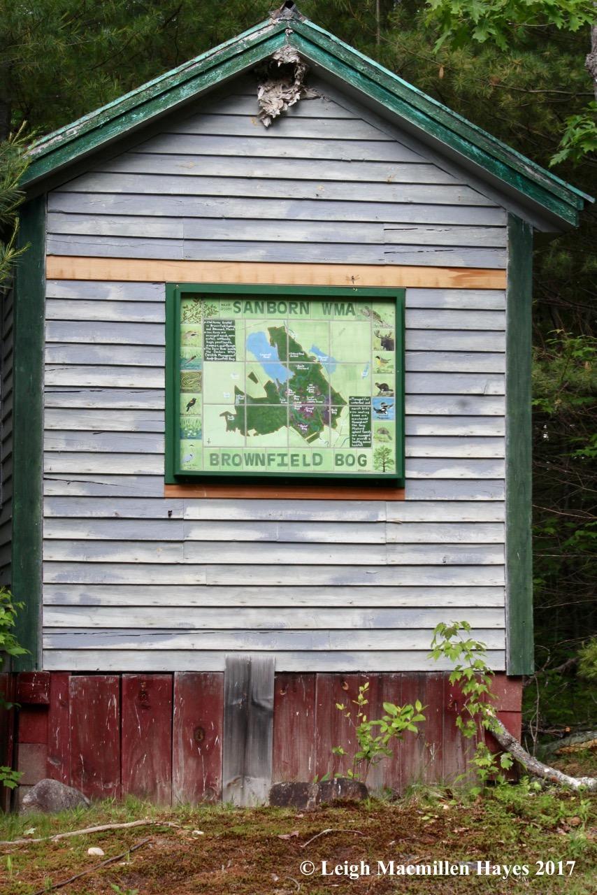 b-Kathy's bog sign