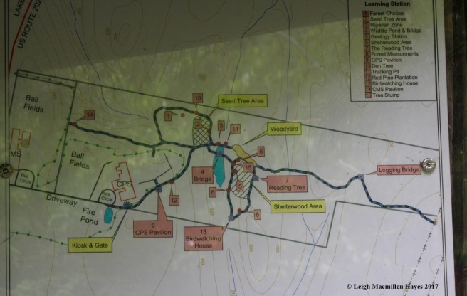 c-trail map