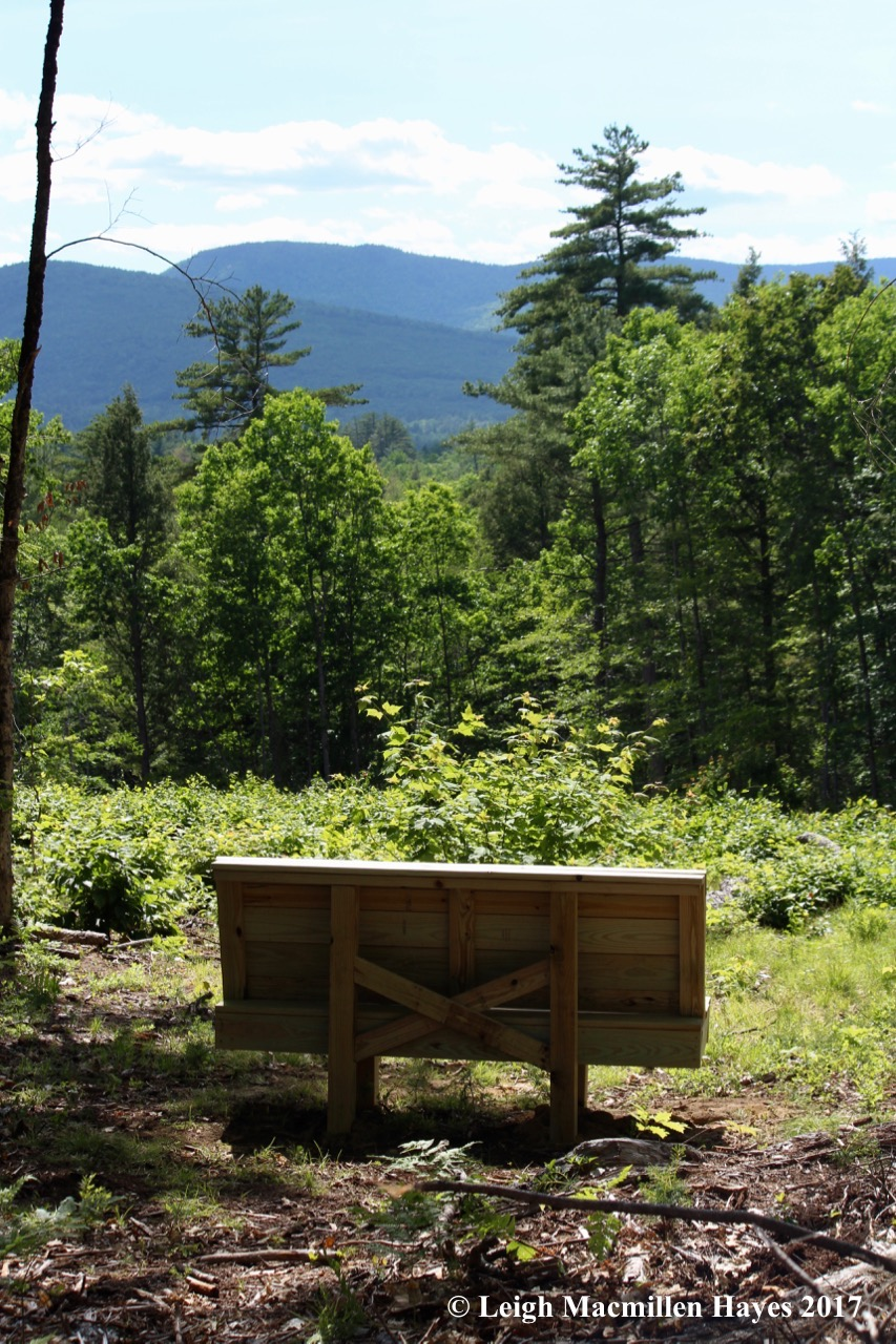 l-bench view