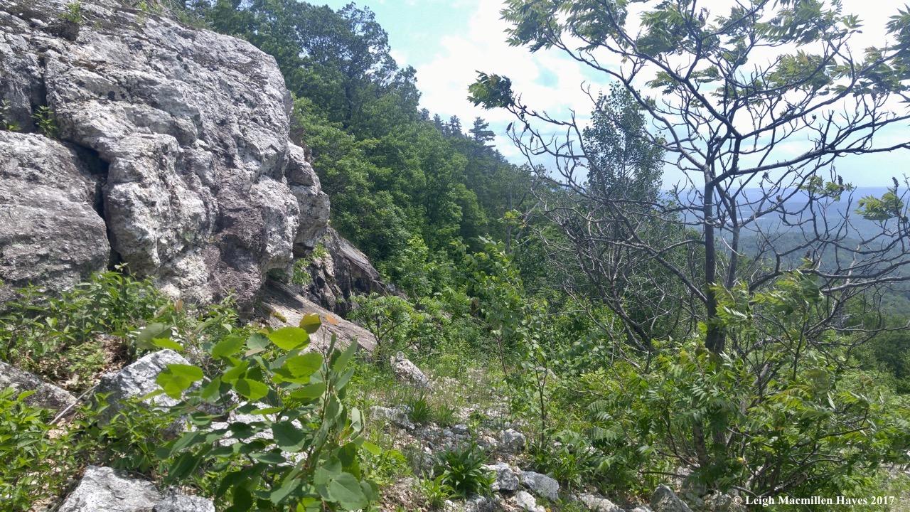 n-climbing down to quarry