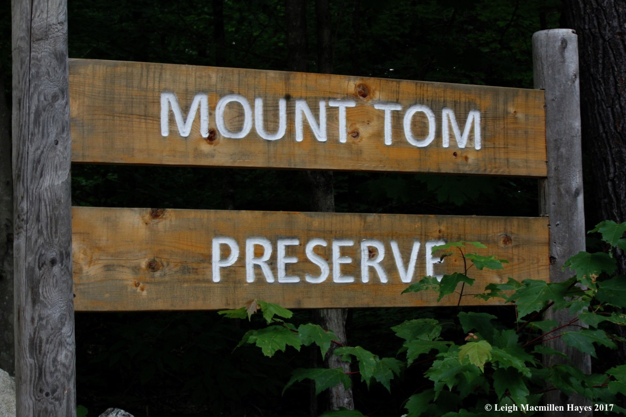 t-Mount Tom Preserve sign
