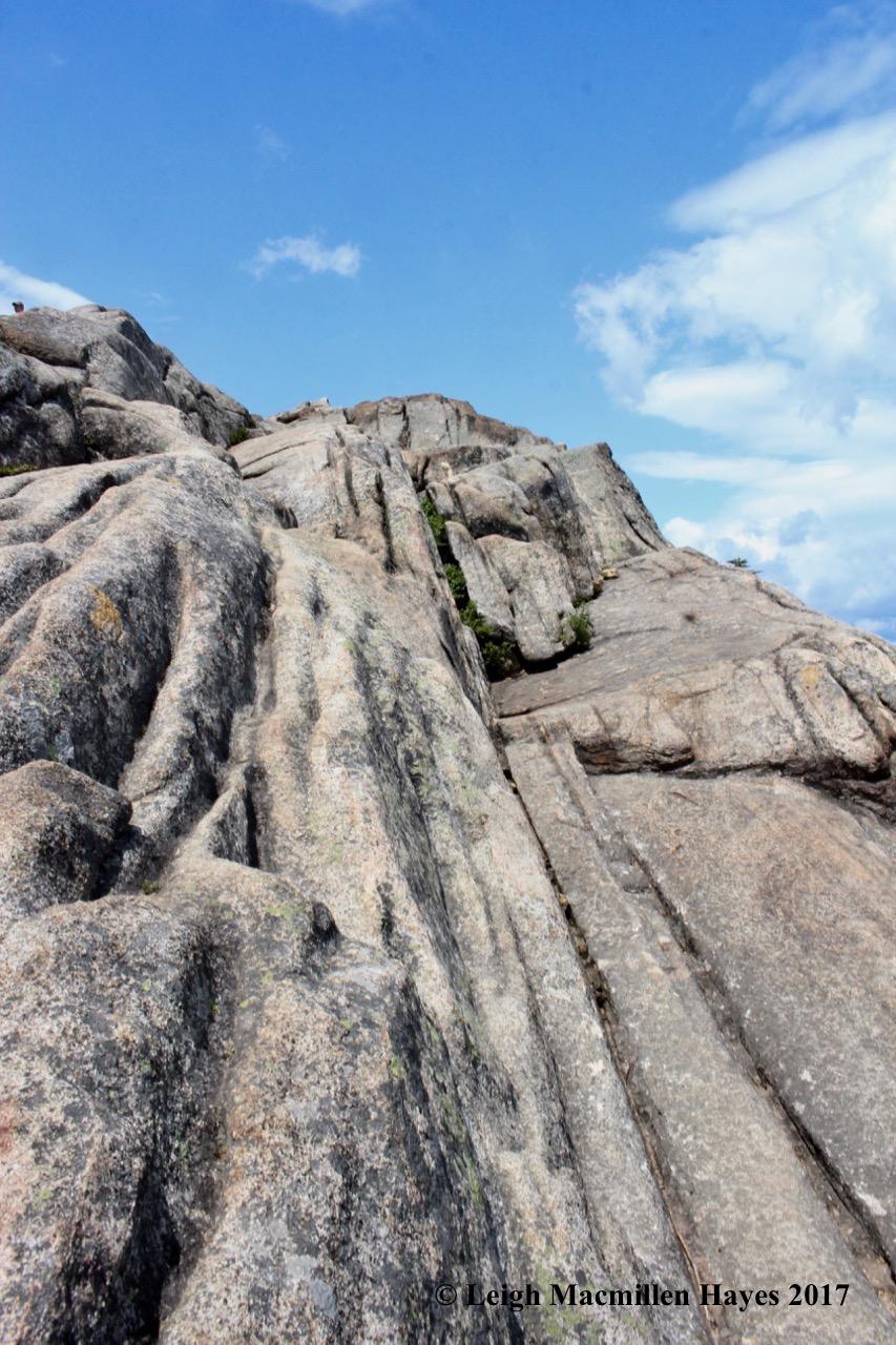 c-geology folds